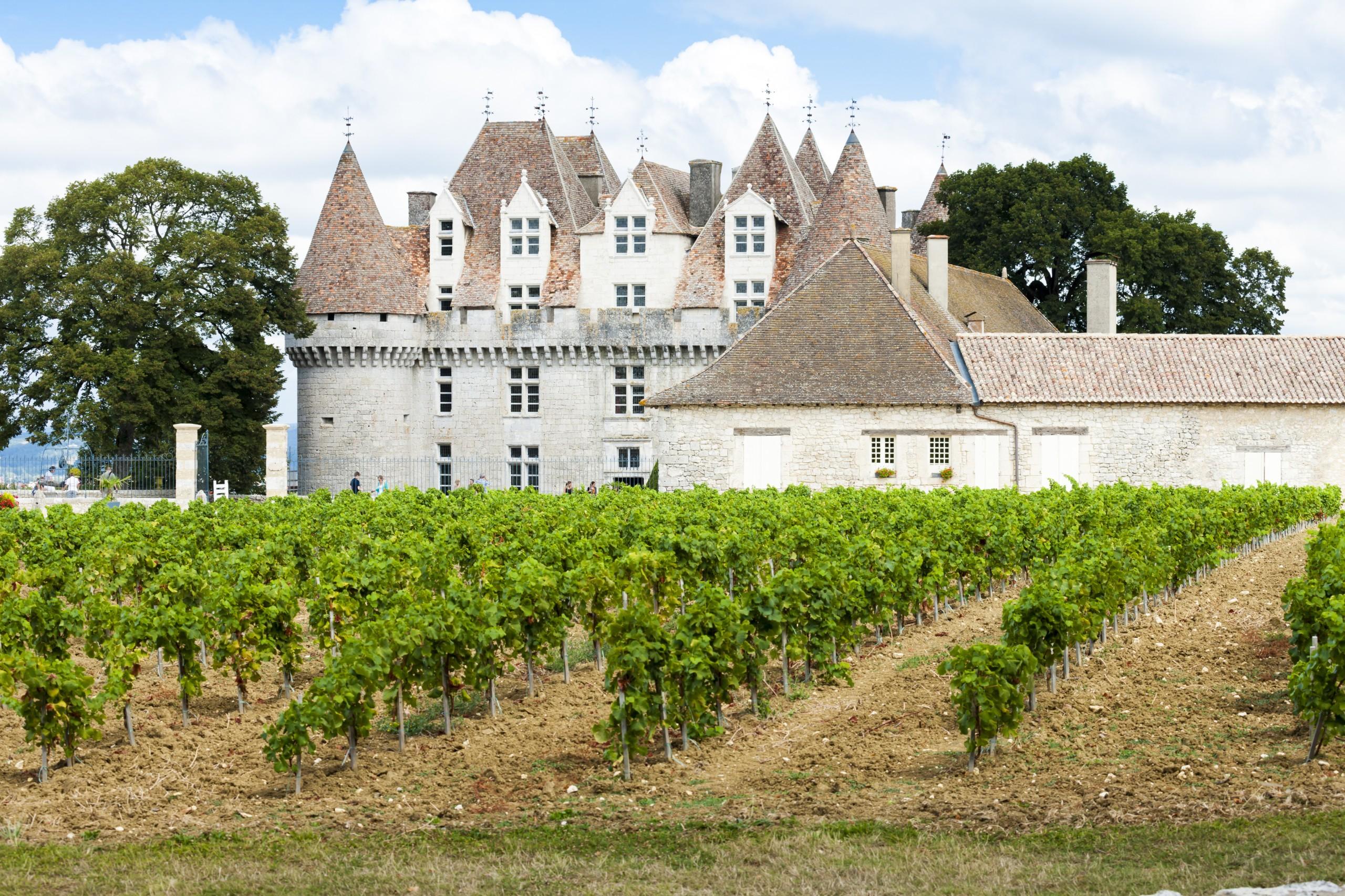 Chateau Bergerac